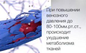 Метаболизм тканей